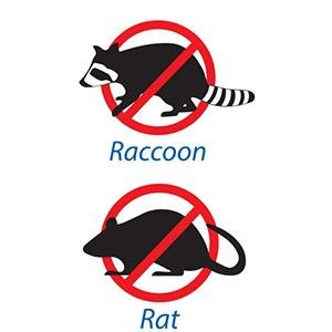 Repel Pesky Raccoons and Rats from Trash Bags & Trash Cans