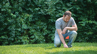 Man checking for moles in a yard.