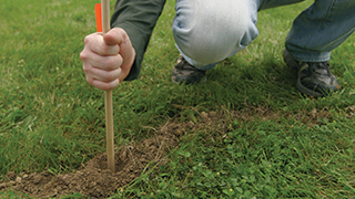 Man digging a hole to put mole bait and trap in it.