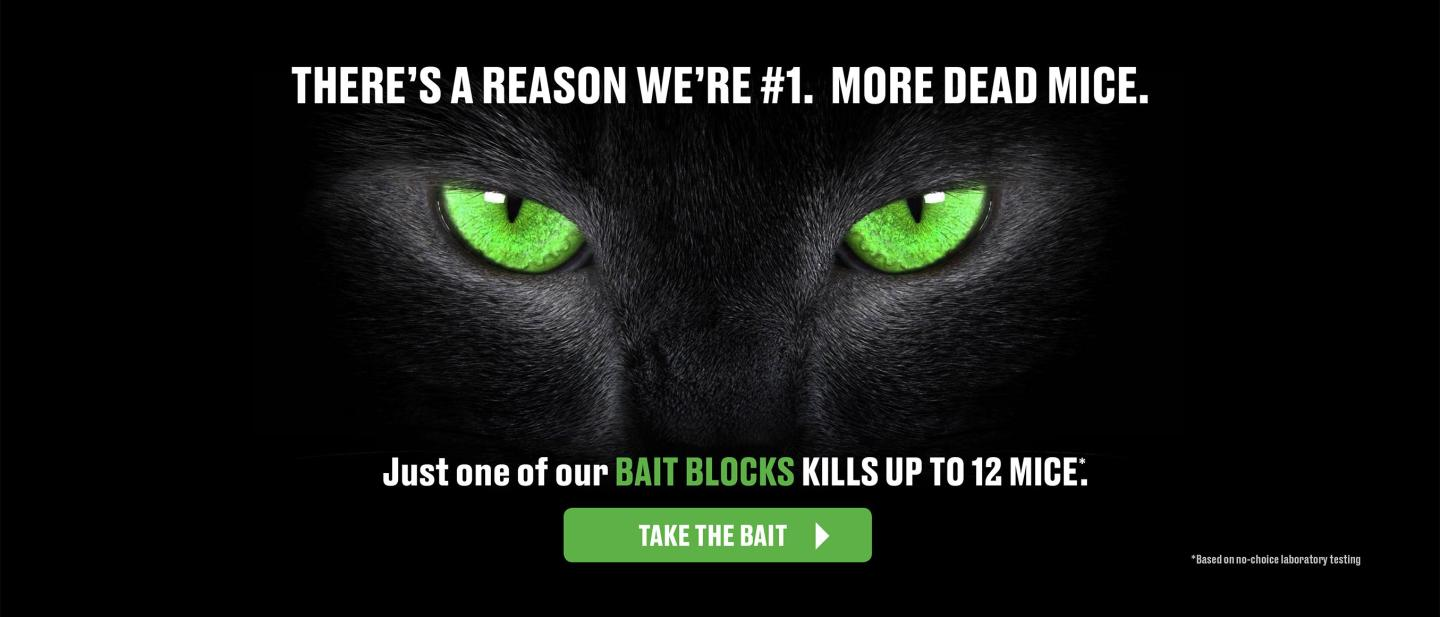 Green eyes on black background with caption- There's A reason we're #1 More Dead Mice. Just one of our bait block kills up to 12 mice