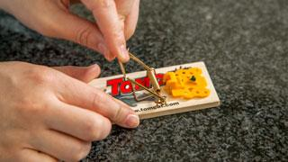 Setting a Tomcat Mechanical Mouse Trap