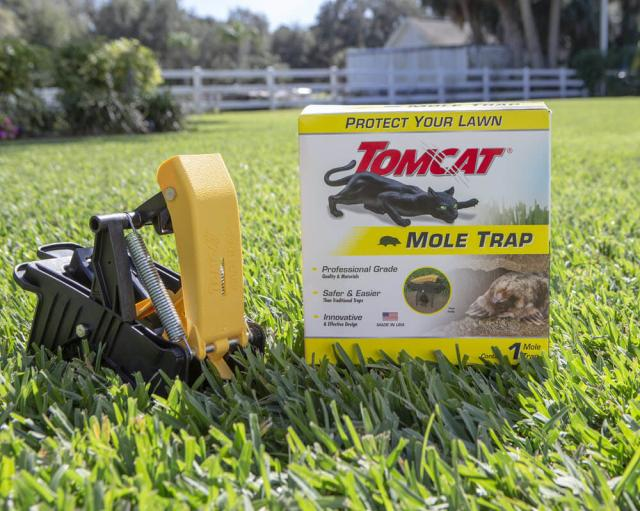 Lawn shot of Mole Trap
