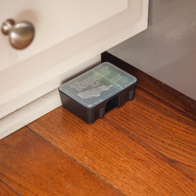 Place bait station where mice travel near baseboards