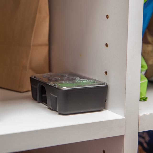 Place bait station where mice travel in cupboards